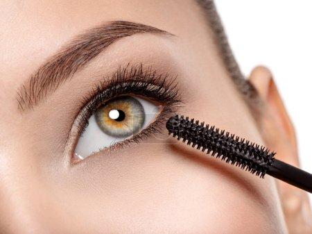 用长长的黑色睫毛和化妆刷拍摄的女性眼睛宏观照片-工作室照片_高清图片_邑石网