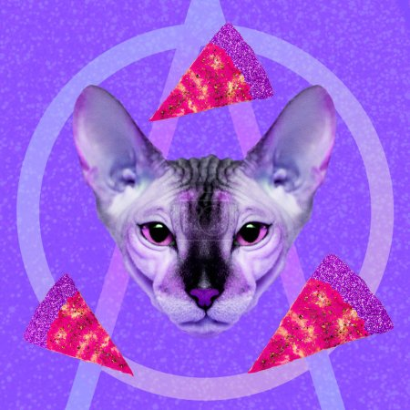 Contemporary  visual art collage. Minimal concept.  Pizza lover cosmic cat