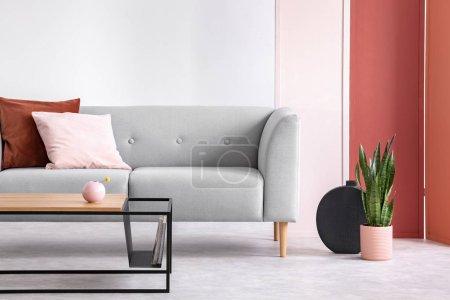 种植旁边的灰色沙发与粉红色和红色的枕头在灰色阁楼内部与桌子和屏幕。真实照片