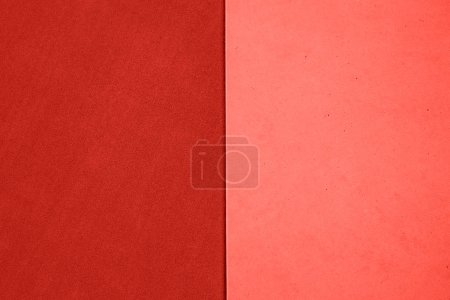 Texture background of two colors. Top view. Flat lay style. Living Coral color of the year 2019.